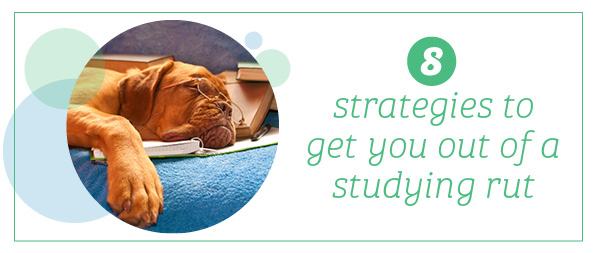 8 strategies to get you out of a studying rut